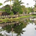 Reisebericht Jamaika - Schöne Tage in der Karibik