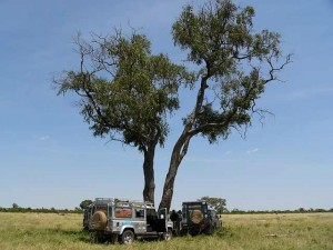 Abenteuer-Botswana