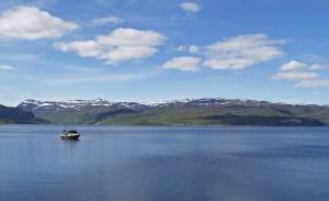 Fjoerdlandschaft-Norwegen