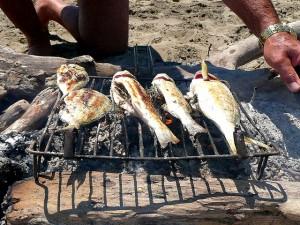 Gegrillter-Fisch-im-Norwegen-Urlaub