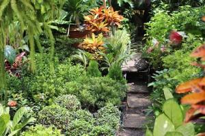 Manila-Garten